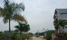 Bán ô đất đẹp khu Mu Zin - Xã Tiên Kiên, huyện Lâm Thao - Phú Thọ.