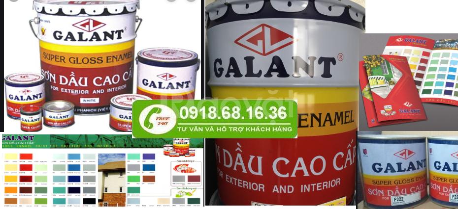 Cần tìm địa chỉ bán sơn dầu Galant tại Đồng Tháp