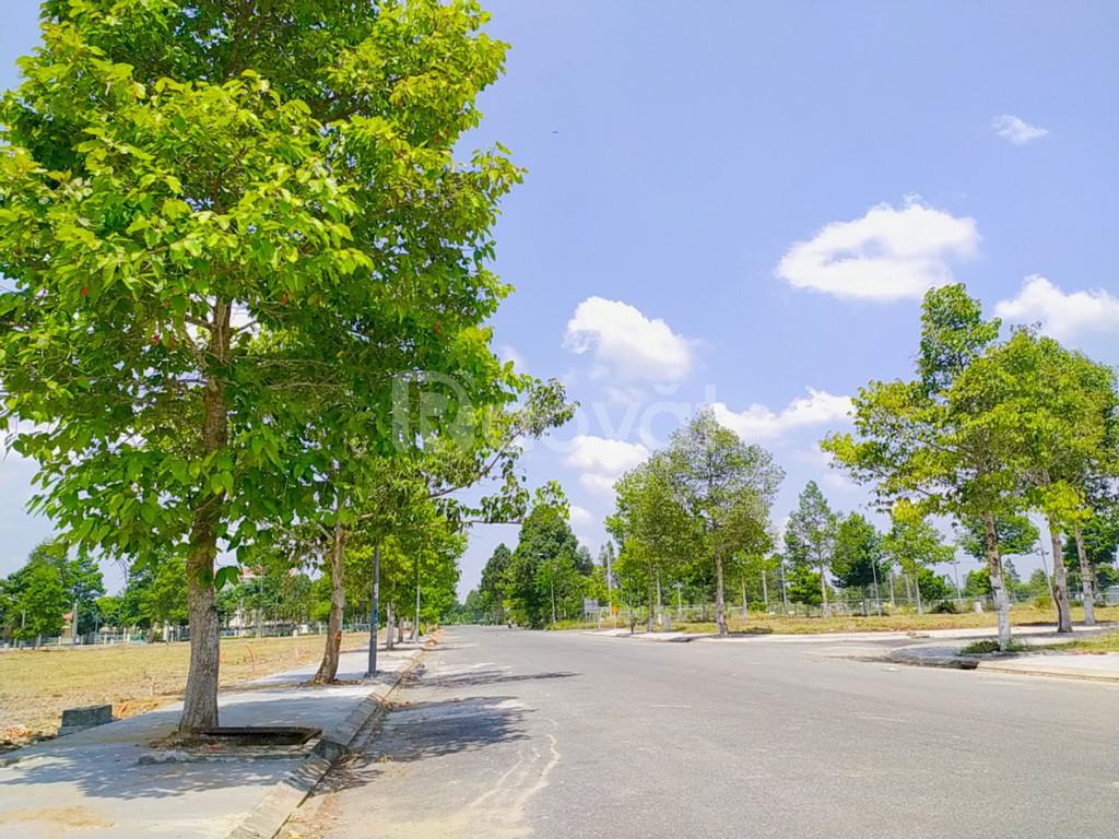 Stella Mega City (Ngân Thuận)- Nơi đầu tư - an cư an toàn