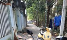Bán đất nền P. Nghĩa Chánh - TP Quảng Ngãi, dt 107.4m2, giá 960tr