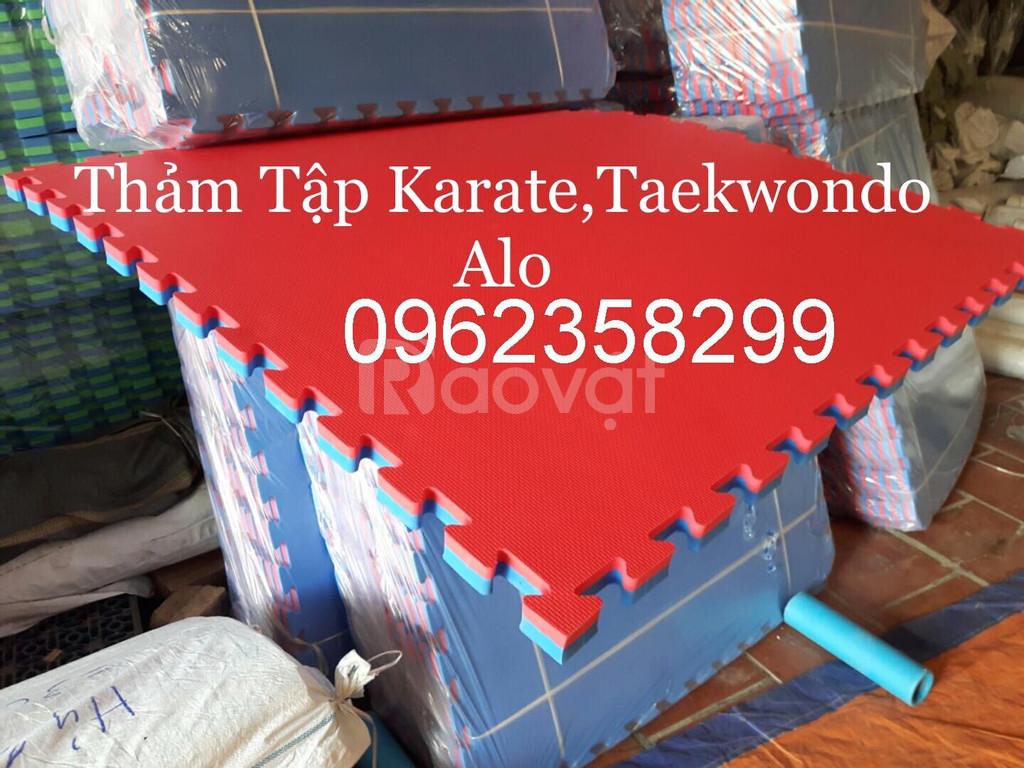Thảm tập karate, taewondo, vovinam