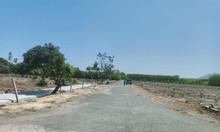 Bán đất tại Xã Long Mỹ, đất đỏ,  BRVT  diện tích 1,300m2  giá 1.35tr