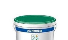 Đại lý sơn sân Tennis Terraco chất lượng hoàn hảo cho mọi công trình