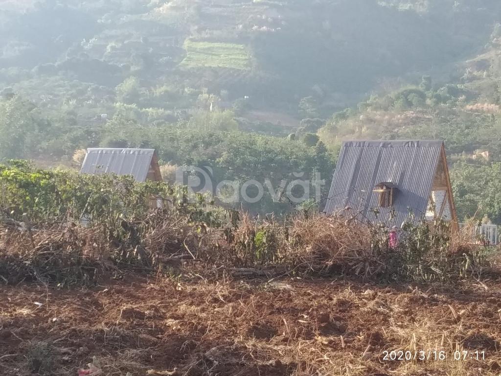 Đất bán gấp xã Đông Thanh, Lâm Hà, Lâm Đồng.