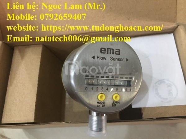 Cảm biến lưu lượng Ema Fl6001 - Công Ty TNHH Natatech