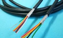 Cáp tín hiệu chống nhiễu AWM 2464 nhiều lõi