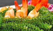 Rong nho biển tươi - tốt cho sức khỏe của mọi người