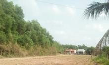 Bà cô kẹt tiền nhờ bán dùm lô đất gần KCN Phước Đông, Tây Ninh