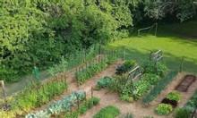 Biệt thự Vườn - Ven sông quận 9, 21 triệu/m2 Nơi nghĩ dưỡng lý tưởng