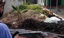 Bán đất tại đường nhánh Nguyễn Chí Thanh, Thủ Dầu Một, Bình Dương