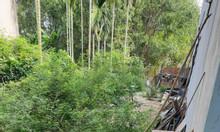 Bán đất nền - P Nghĩa Chánh,diện tích 107,4m2,giá 9xxtr