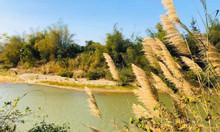 Cơ hội đất khu đô thị sinh thái đầu tiên của Khánh Vĩnh- NT