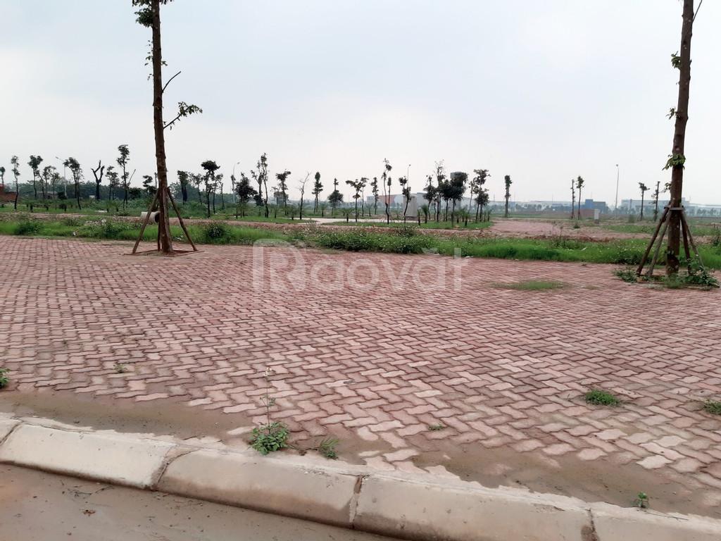 Bán lô liền kề trung tâm khu công nghiệp Yên Phong, Bắc Ninh