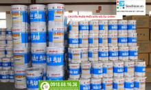 Đại lý phân phối sơn hải âu chuyên sơn tàu biển tại Vũng Tàu