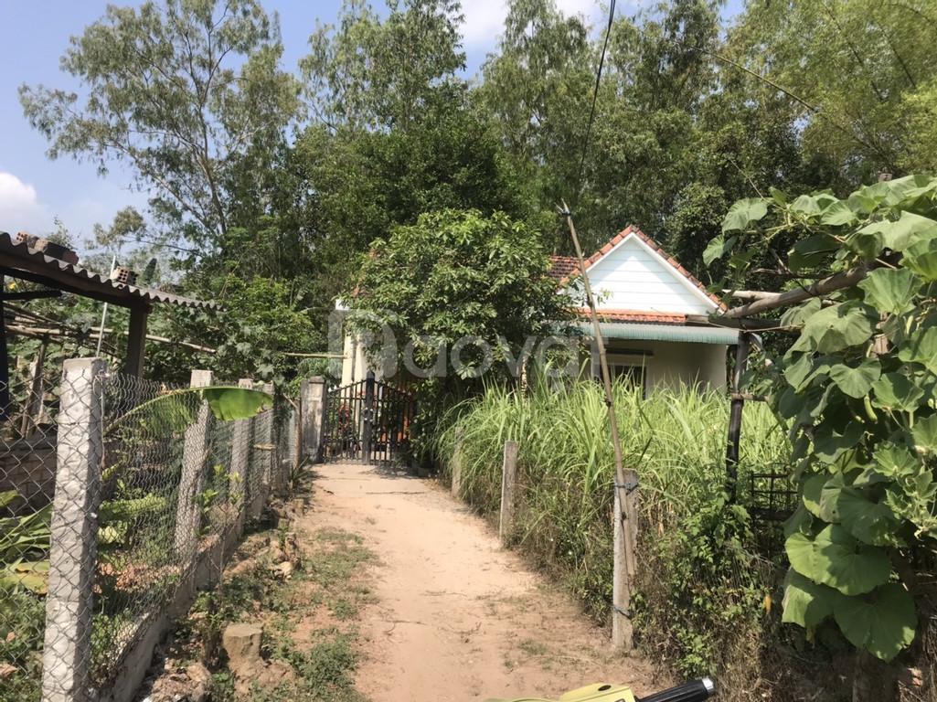 Bán đất xã Bình Hiệp
