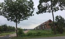 Chính chủ chuyển nhượng rừng sản xuất, đất đã trồng cây sẵn từ 5ha