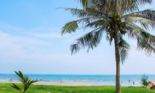 Bán đất biển Nhân Trạch- Quảng Bình giá rẻ-sổ từng nền