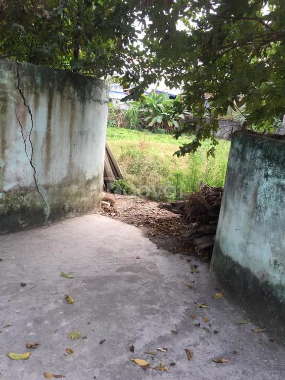 Đất thôn Nhu Kiều xã Quốc Tuấn, huyện An Dương, HP