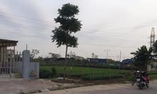 Giá cực tốt lô đất mặt đường nội bộ khu Tái định cư Hạ Đoạn 3