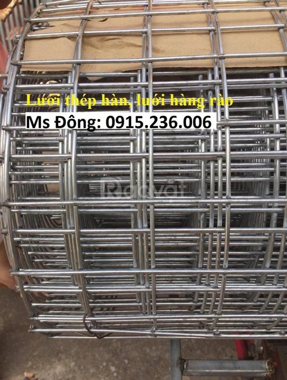 Lưới thép hàn phi 2 ô 25x25, phi 3 ô 50X50 mạ kẽm, hàng đen dạng cuộn