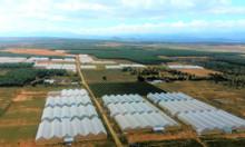 Kẹt tiền bán lô đất Bắc Bình - Bình Thuận 3000m2 giá chỉ 200 triệu
