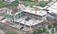 Bất động sản tại dự án Viva Plaza