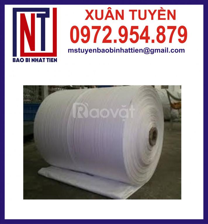 Cuộn PP dệt giá rẻ, vải PP dệt dạng cuộn (ảnh 1)