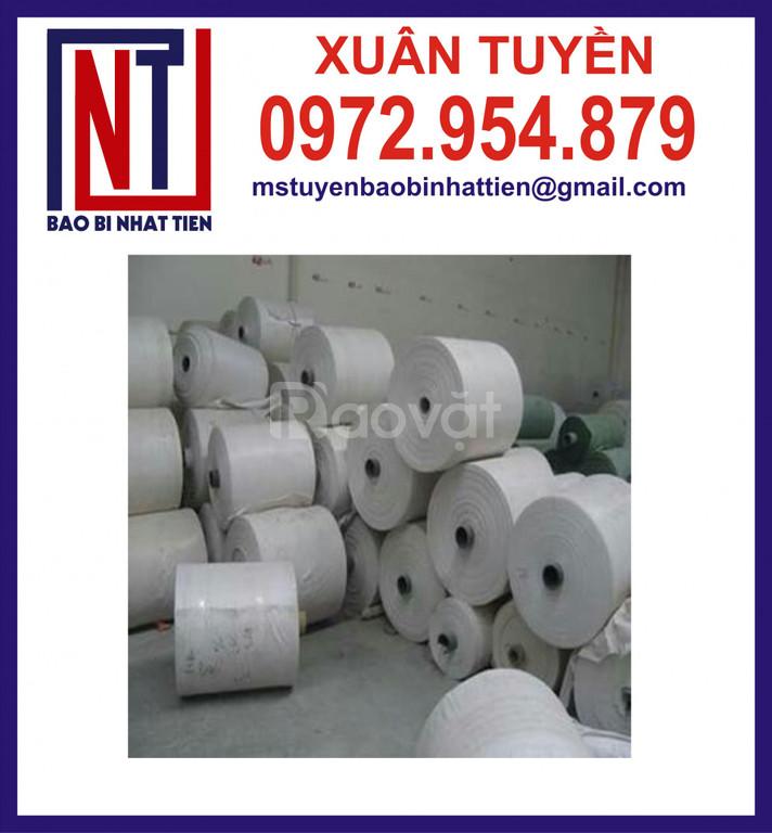 Cuộn PP dệt giá rẻ, vải PP dệt dạng cuộn (ảnh 6)