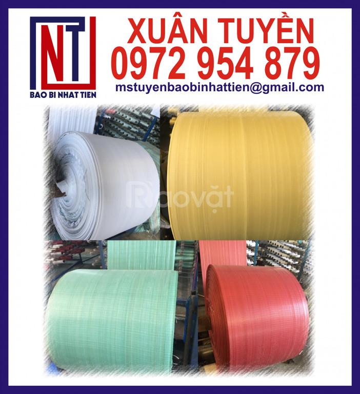 Cuộn PP dệt giá rẻ, vải PP dệt dạng cuộn (ảnh 4)