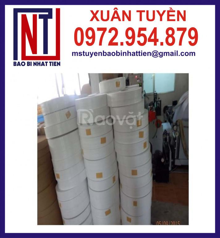 Cuộn PP dệt giá rẻ, vải PP dệt dạng cuộn (ảnh 8)