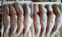 Cá Hồng phèn 1 nắng – Biển Quỳnh Food