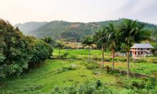 Đất đối diện Villa Xanh, giá chỉ 5 tr/m , phù hợp xây villa