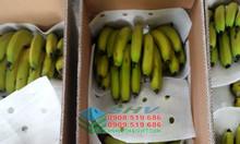 Màng PE Foam dạng tấm bọc lót linh kiện điện tử và bọc lót trái cây