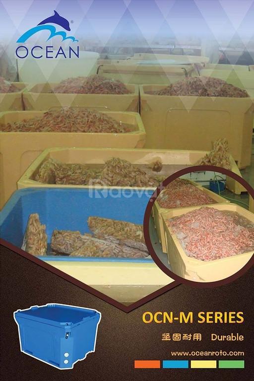 Nhà cung cấp hàng đầu thùng nhựa cách nhiệt Malaysia (ảnh 5)