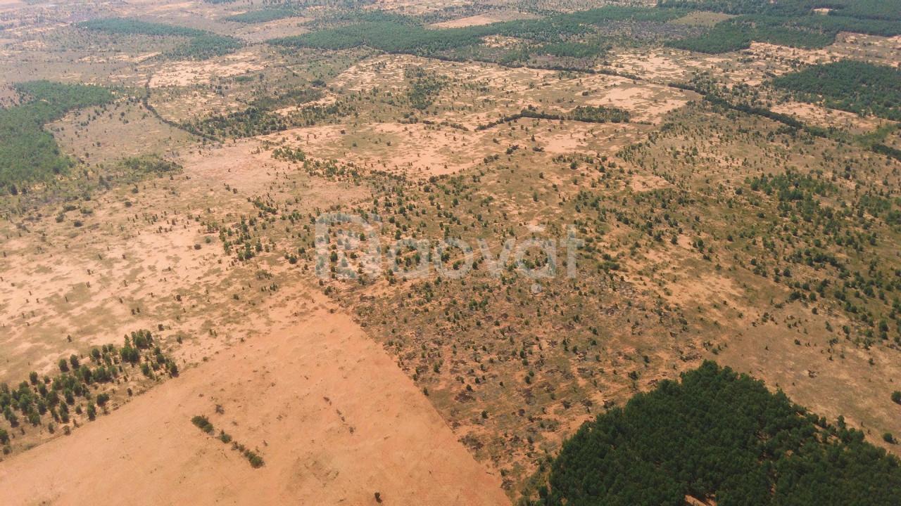 Đất bằng phẳng sổ đỏ BÌnh Thuận, Phan Thiết
