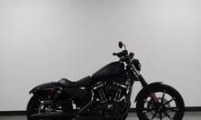 Bán Harley-Davidson Sportster Iron 883 XL883N Data 2019