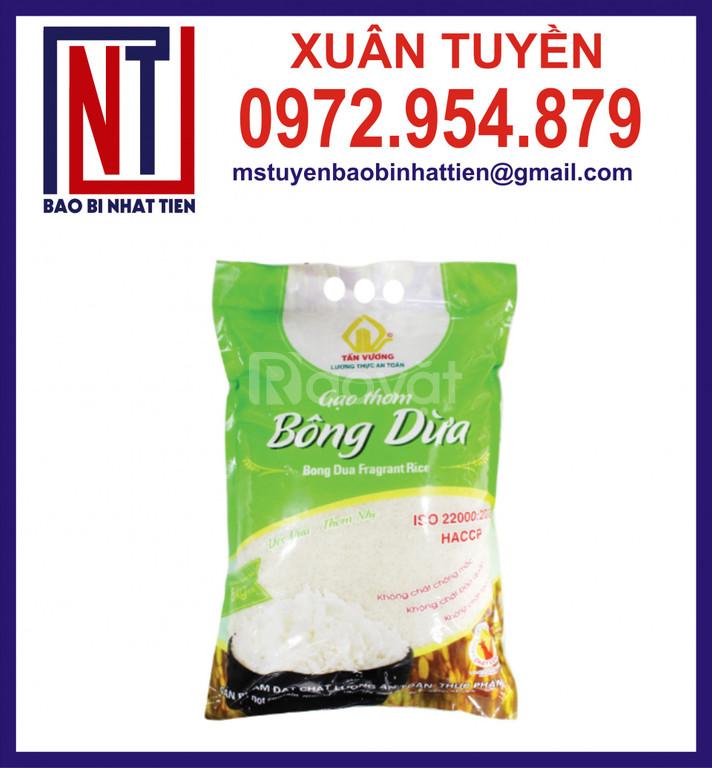 Bao bì màng ghép PA/PE đựng gạo