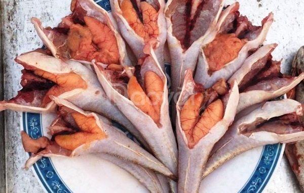 Cá chai – Đặc sản truyền thống biển Quỳnh xứ Nghệ