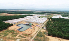 Bán đất Xã Hồng Thái Bình Thuận Mũi Né giá chỉ 70.000đ/m2