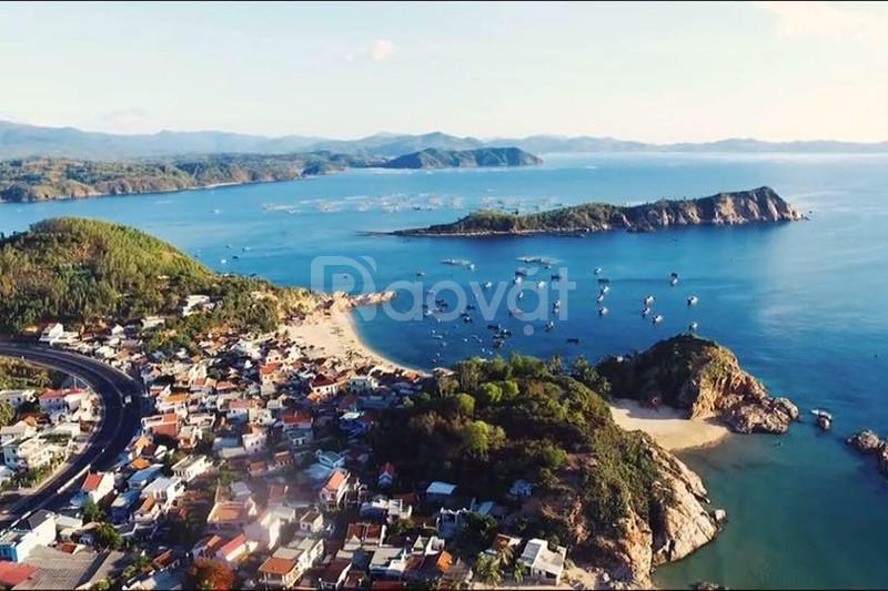 Giá gốc khu dân cư Đồng Mặn, biển Phú Yên chỉ 499 triệu/nền