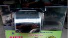 Máy xay tạo viên giò thịt SW 280 0917791981 (ảnh 5)