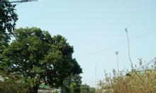Bán đất hẻm Hàm Nghi Chư Á, Tp .Pleiku Gia Lai chỉ với 460tr/nên