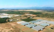 Bán đất Bình Thuận Phan Thiết giá rẻ 70.000đ/m2