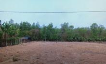 Bán đất mặt tiền đường DT750