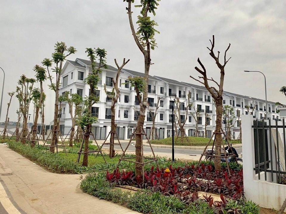 Giá gốc CĐT 5 căn Liền Kề Gamuda hướng ĐN xây hoàn thiện 4 tầng