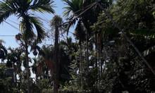 Cần bán nhanh lô đất đẹp khu Tịnh Ấn Tây.