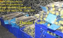 Ống mềm dẫn nước nóng lạnh inox, dây cấp nước mềm inox, ống cấp nước