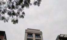 Bán nhà Kim Mã Ba Đình 100m 10 tầng MT 8m kinh doanh Apartment VIP.