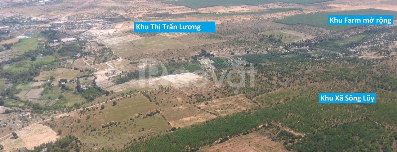 Bán đất trồng cây Bình Thuận đón đầu cao tốc sang sổ ngay