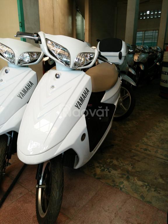 Khuyến mãi xe máy điện + xe đạp điện - nhanh tay nhận giá ưu đãi
